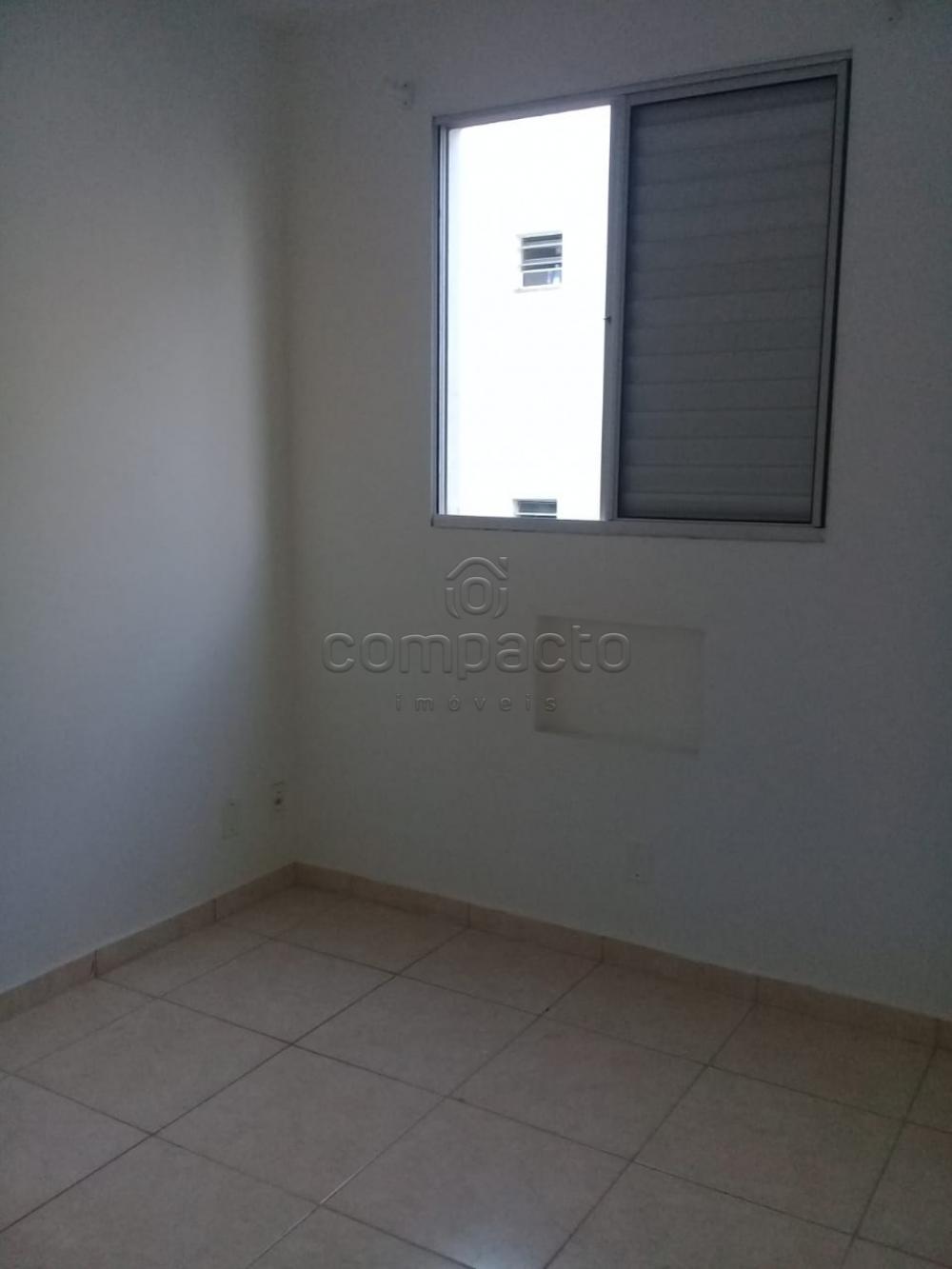 Alugar Apartamento / Padrão em São José do Rio Preto apenas R$ 650,00 - Foto 11