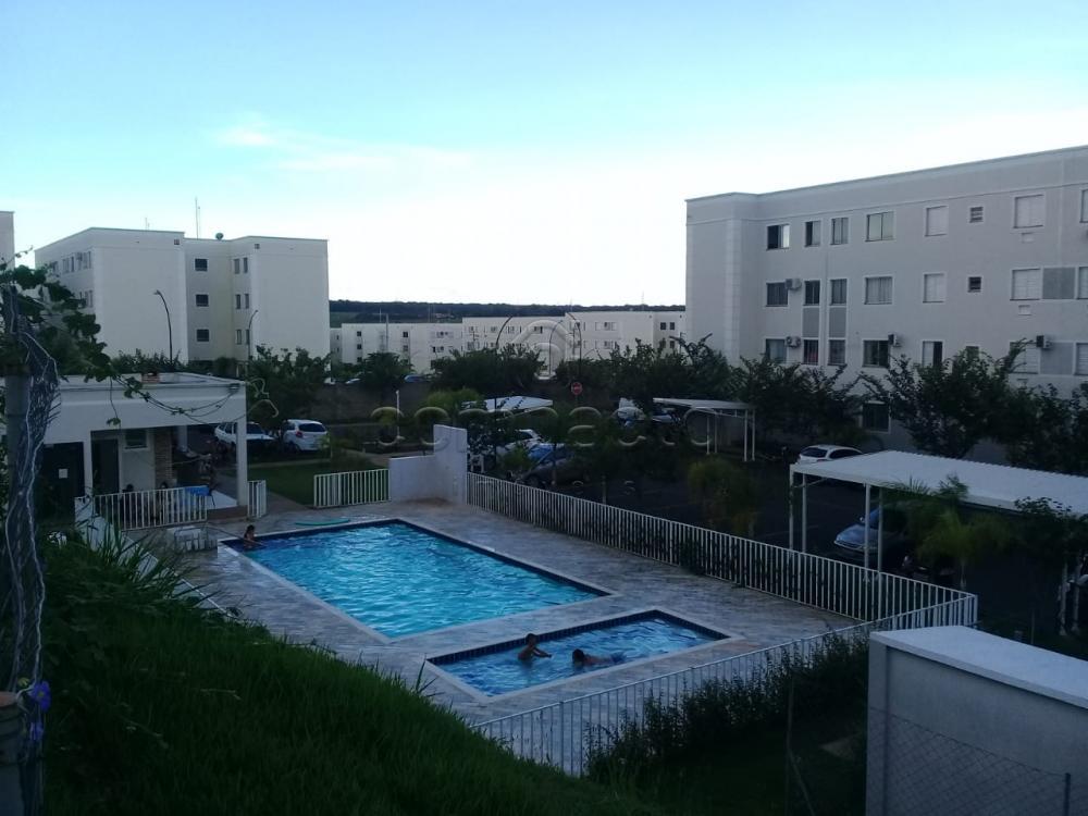 Alugar Apartamento / Padrão em São José do Rio Preto apenas R$ 650,00 - Foto 12