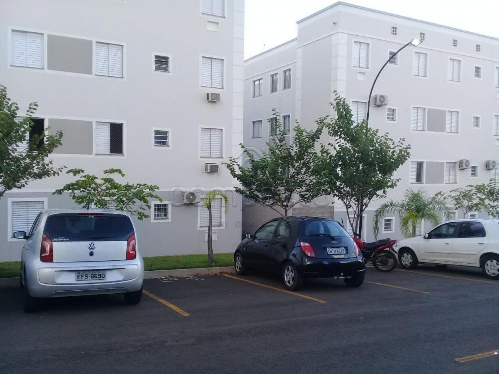 Alugar Apartamento / Padrão em São José do Rio Preto apenas R$ 650,00 - Foto 13