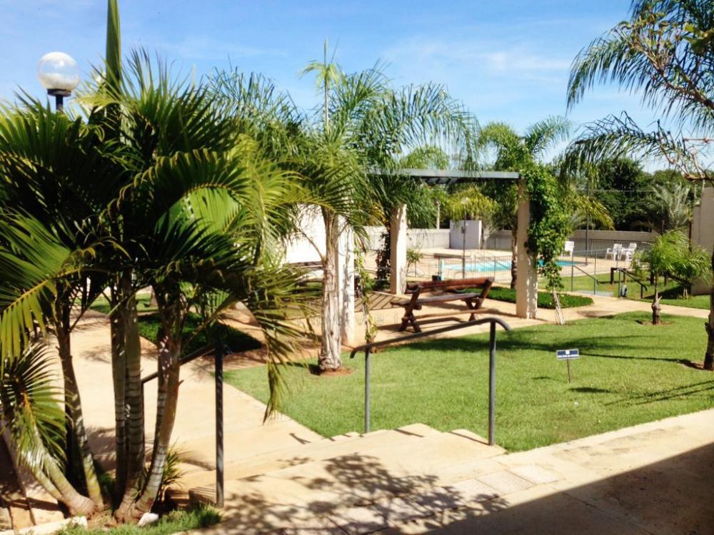 Comprar Apartamento / Padrão em São José do Rio Preto apenas R$ 240.000,00 - Foto 20