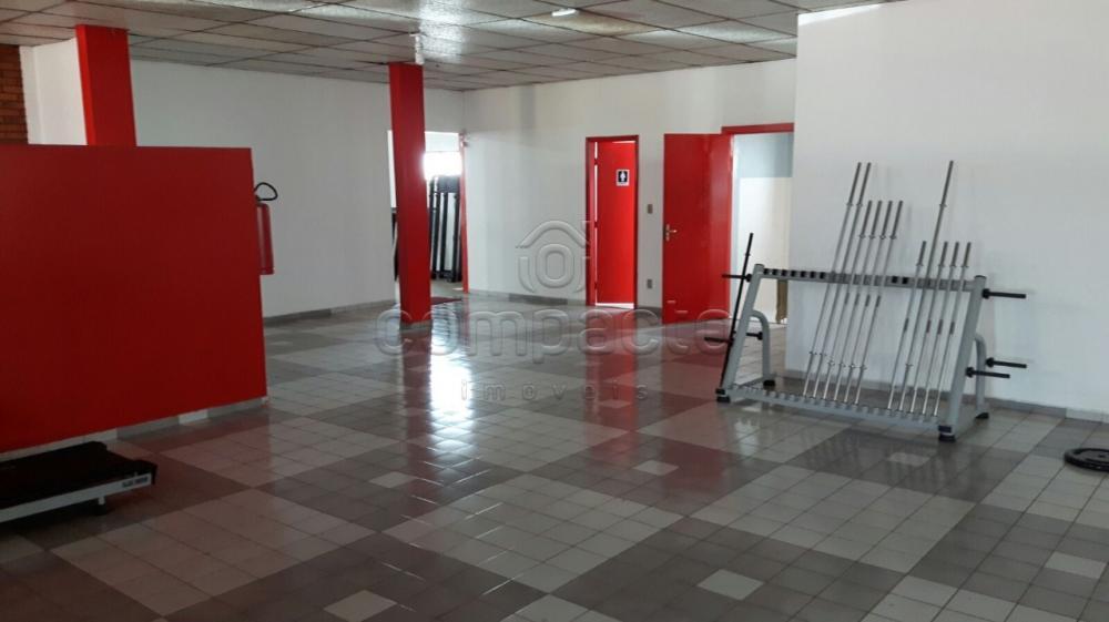 Alugar Comercial / Barracão em São José do Rio Preto apenas R$ 8.000,00 - Foto 2