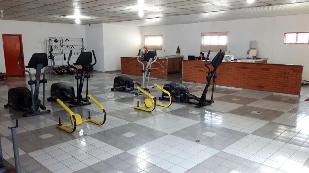 Alugar Comercial / Barracão em São José do Rio Preto apenas R$ 8.000,00 - Foto 3