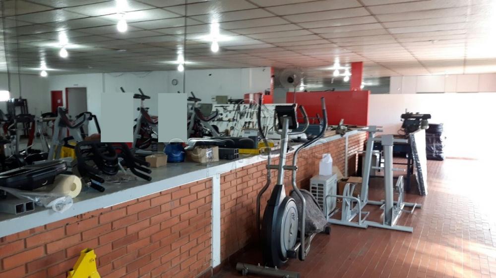 Alugar Comercial / Barracão em São José do Rio Preto apenas R$ 8.000,00 - Foto 5