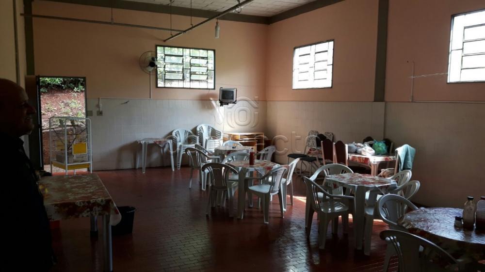 Alugar Comercial / Barracão em São José do Rio Preto apenas R$ 8.000,00 - Foto 8