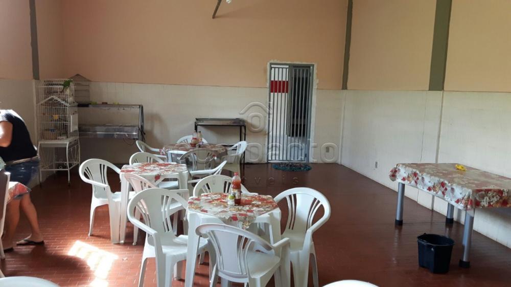 Alugar Comercial / Barracão em São José do Rio Preto apenas R$ 8.000,00 - Foto 9