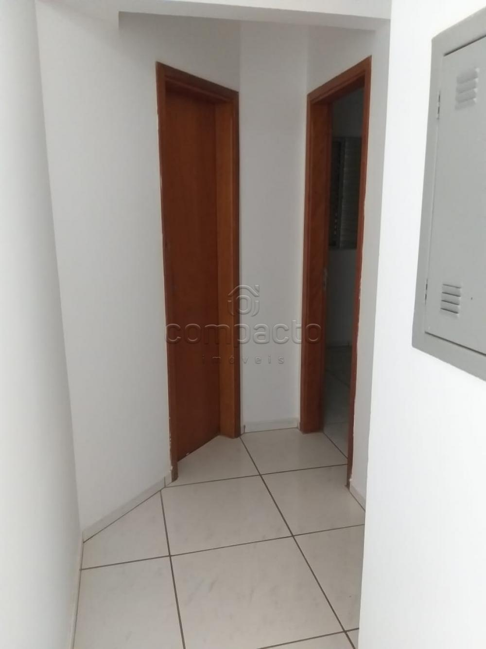 Alugar Apartamento / Padrão em São José do Rio Preto apenas R$ 1.300,00 - Foto 11