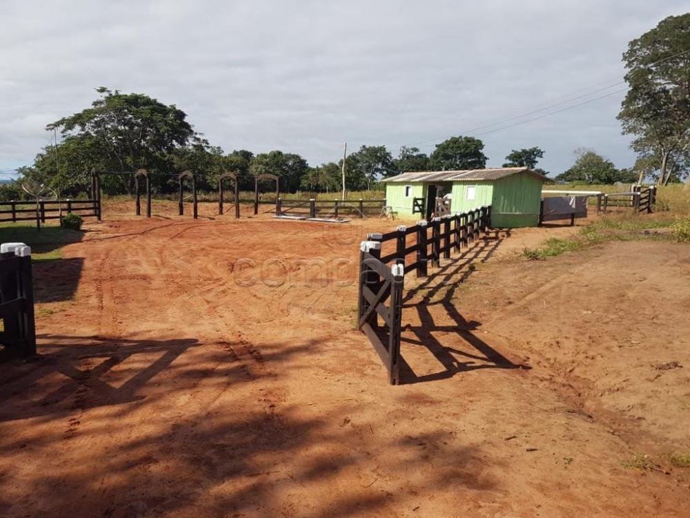 Comprar Rural / Fazenda em Cassilândia apenas R$ 7.500.000,00 - Foto 3