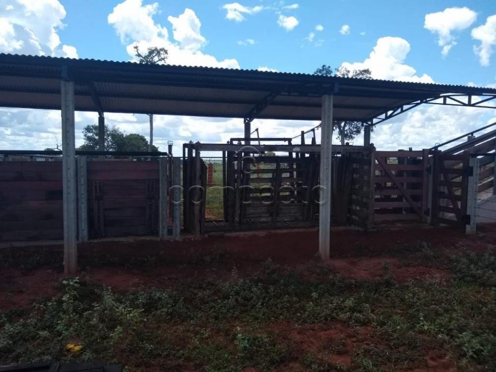 Comprar Rural / Fazenda em Cassilândia apenas R$ 7.500.000,00 - Foto 7