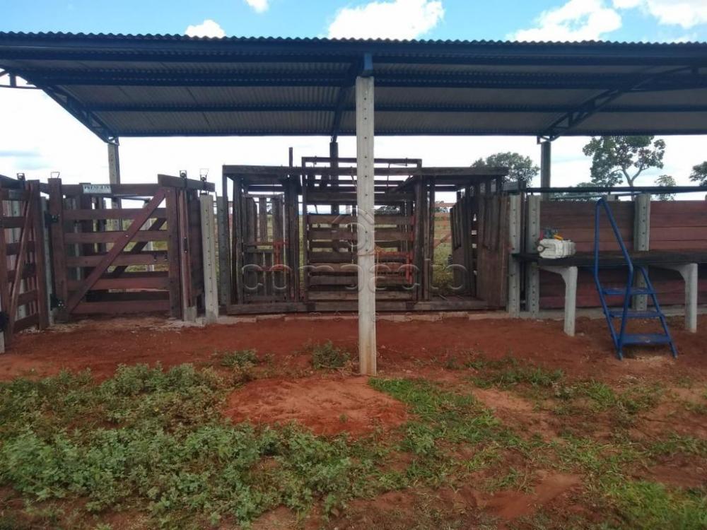 Comprar Rural / Fazenda em Cassilândia apenas R$ 7.500.000,00 - Foto 8
