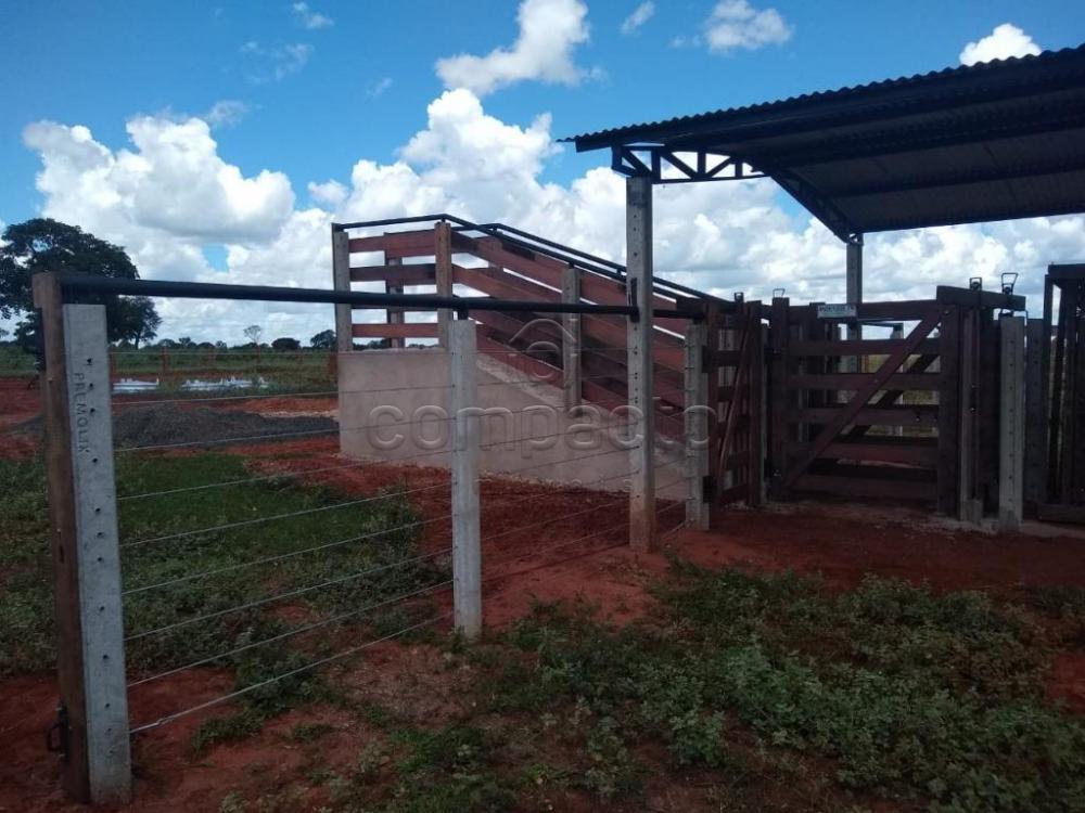 Comprar Rural / Fazenda em Cassilândia apenas R$ 7.500.000,00 - Foto 9