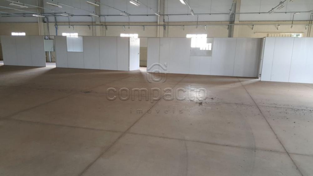 Alugar Comercial / Barracão em São José do Rio Preto apenas R$ 15.000,00 - Foto 4