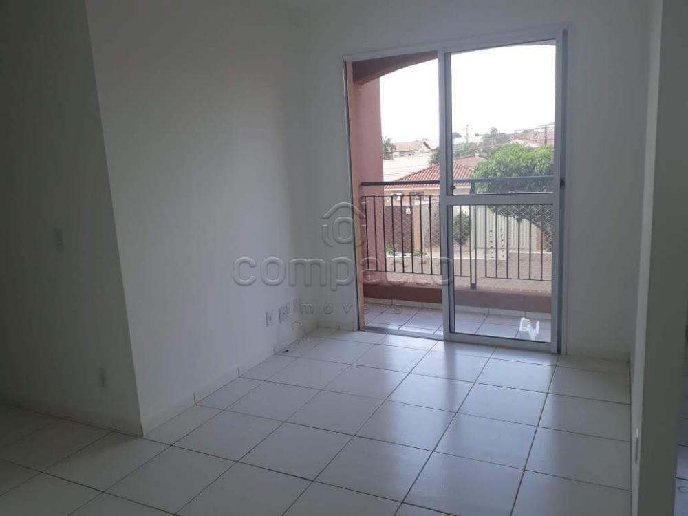 Alugar Apartamento / Padrão em São José do Rio Preto apenas R$ 600,00 - Foto 1