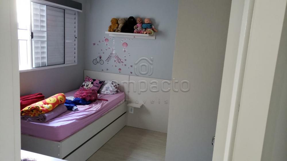 Comprar Casa / Padrão em São José do Rio Preto apenas R$ 315.000,00 - Foto 11