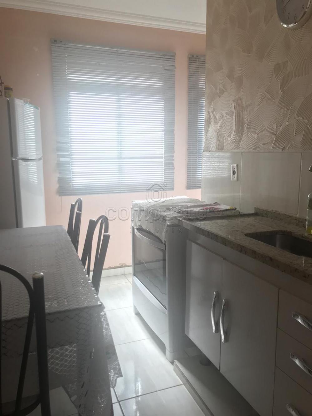 Comprar Apartamento / Padrão em São José do Rio Preto apenas R$ 80.000,00 - Foto 6
