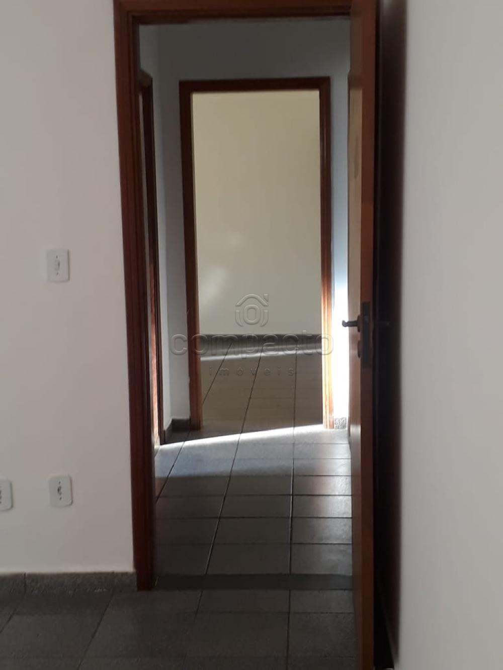 Alugar Casa / Padrão em São José do Rio Preto apenas R$ 1.500,00 - Foto 3
