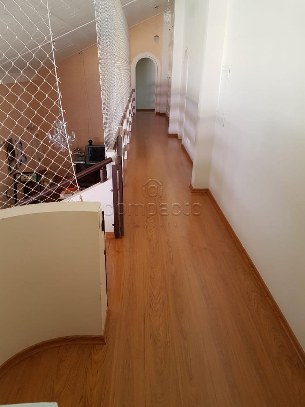 Alugar Casa / Padrão em São José do Rio Preto apenas R$ 10.000,00 - Foto 5