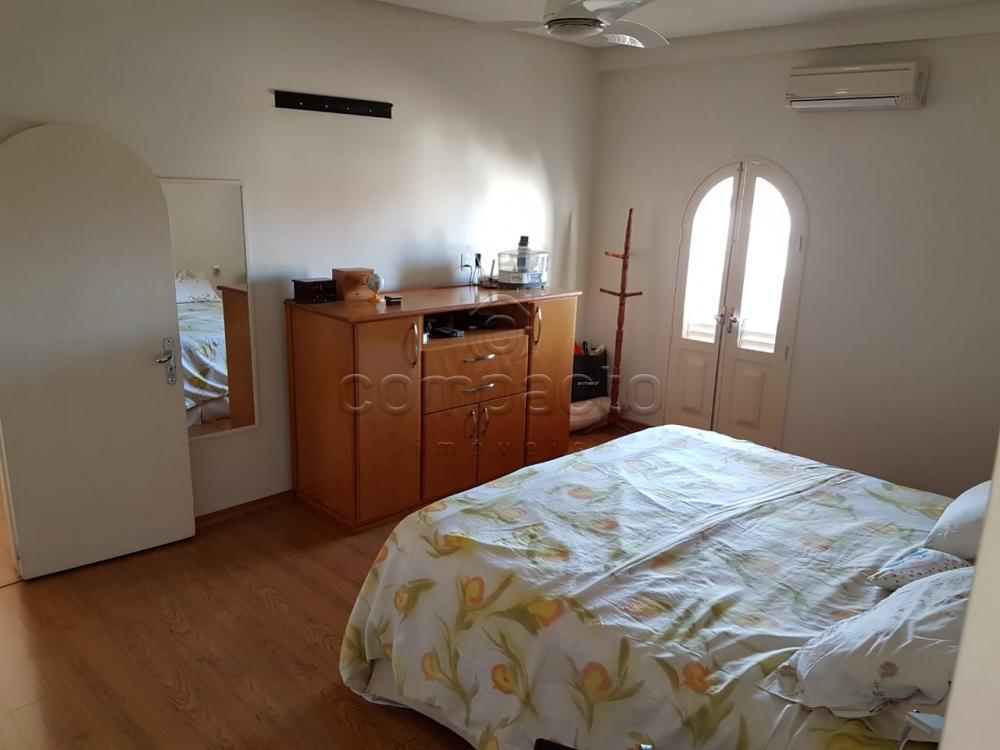 Alugar Casa / Padrão em São José do Rio Preto apenas R$ 10.000,00 - Foto 11