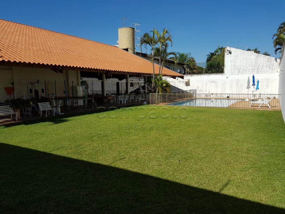 Alugar Casa / Padrão em São José do Rio Preto apenas R$ 10.000,00 - Foto 15