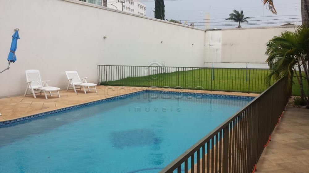 Alugar Casa / Padrão em São José do Rio Preto apenas R$ 10.000,00 - Foto 16