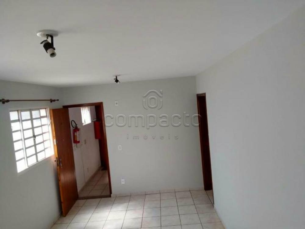 Alugar Apartamento / Padrão em São José do Rio Preto apenas R$ 720,00 - Foto 1
