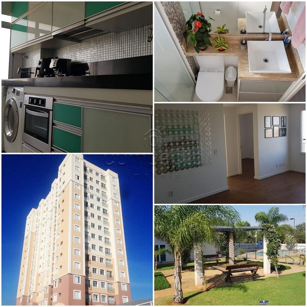 Comprar Apartamento / Padrão em São José do Rio Preto apenas R$ 222.000,00 - Foto 1