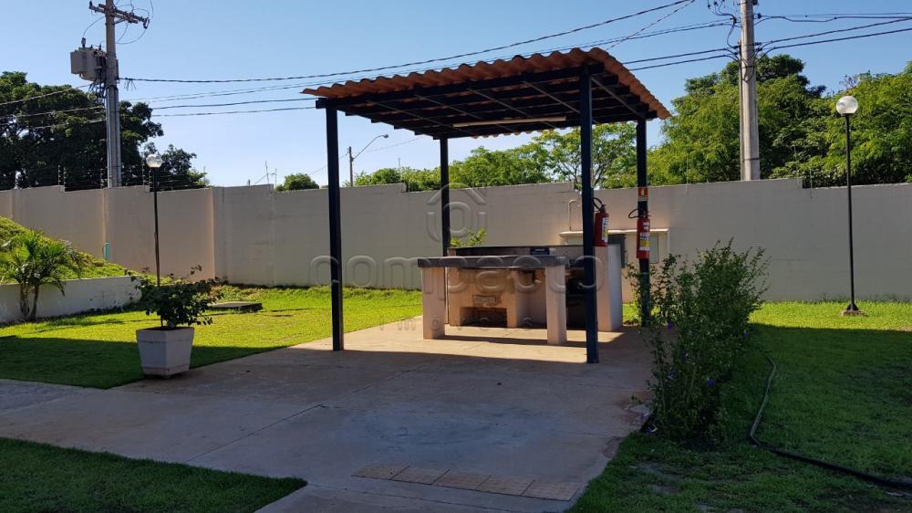 Comprar Apartamento / Padrão em São José do Rio Preto apenas R$ 222.000,00 - Foto 18