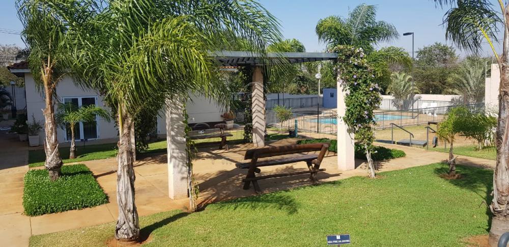 Comprar Apartamento / Padrão em São José do Rio Preto apenas R$ 222.000,00 - Foto 19