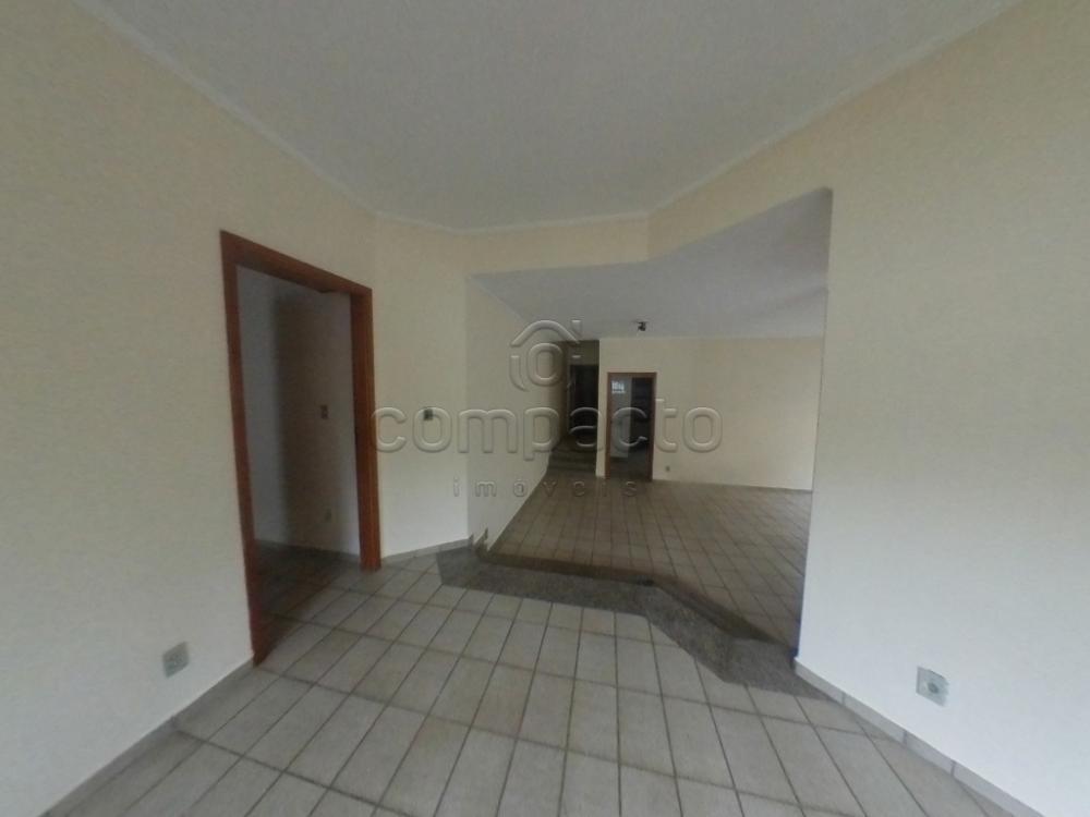 Alugar Casa / Padrão em São José do Rio Preto apenas R$ 1.700,00 - Foto 4