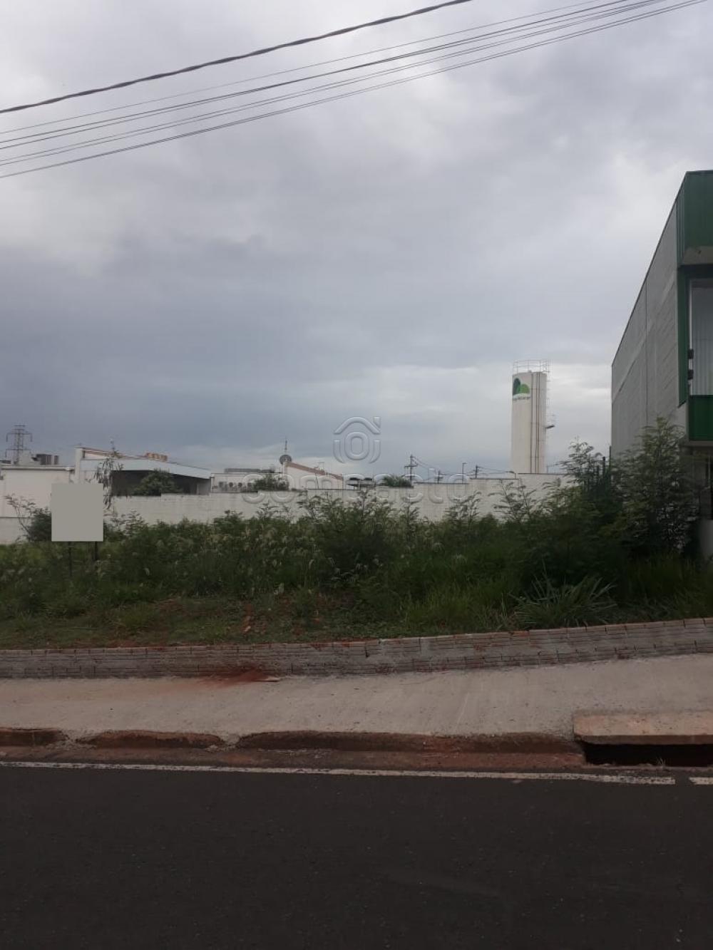 Comprar Terreno / Padrão em São José do Rio Preto apenas R$ 1.900.000,00 - Foto 1