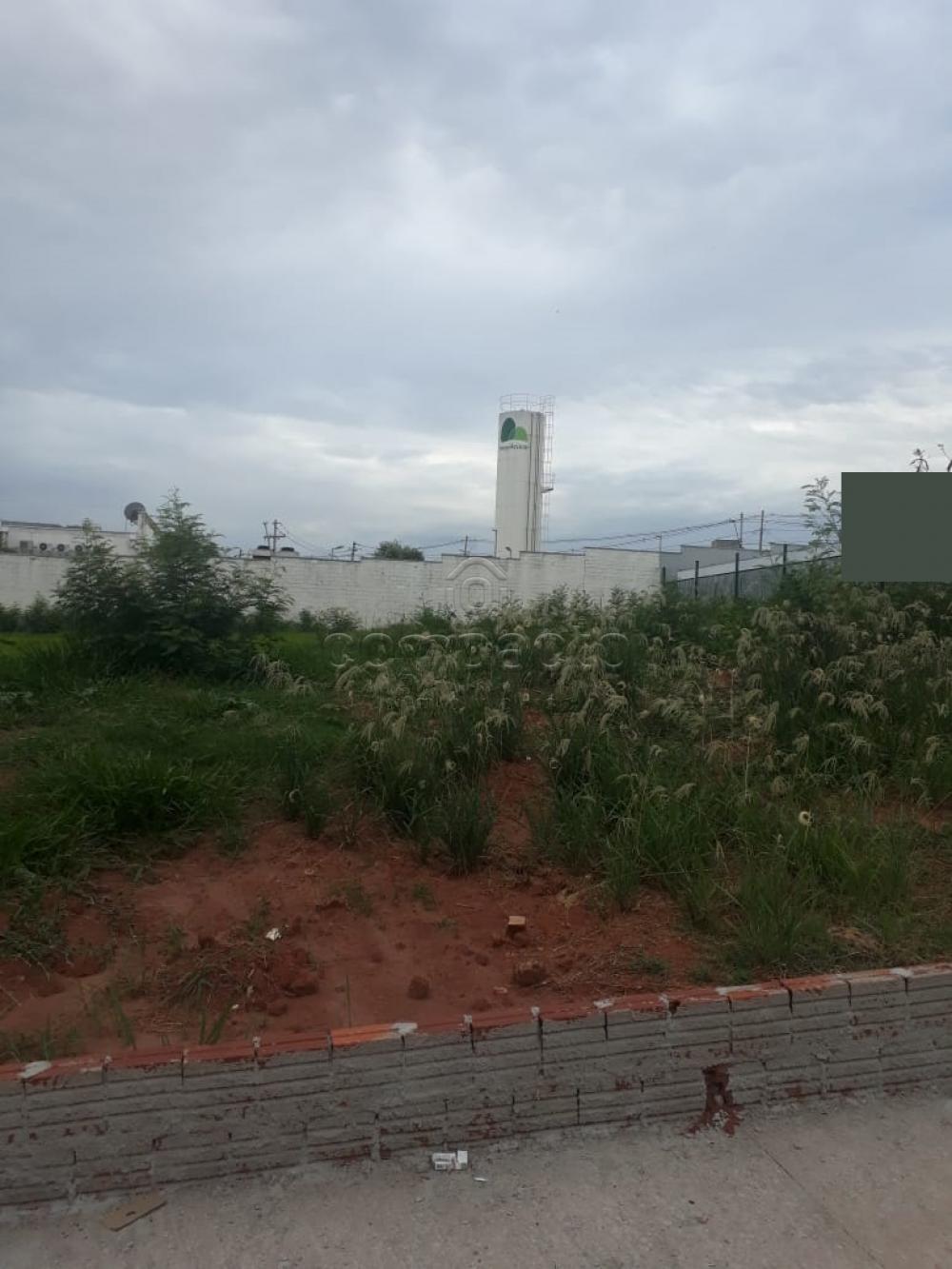 Comprar Terreno / Padrão em São José do Rio Preto apenas R$ 1.900.000,00 - Foto 4