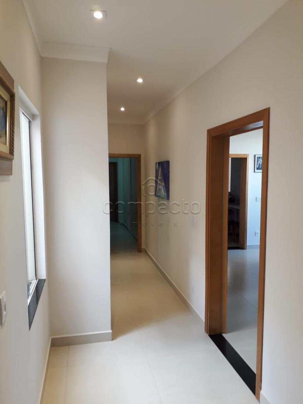 Comprar Casa / Condomínio em Mirassol apenas R$ 650.000,00 - Foto 9