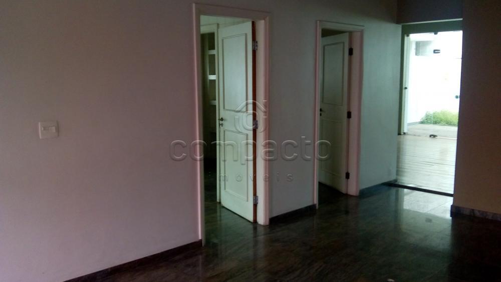 Alugar Comercial / Casa em São José do Rio Preto apenas R$ 8.000,00 - Foto 5