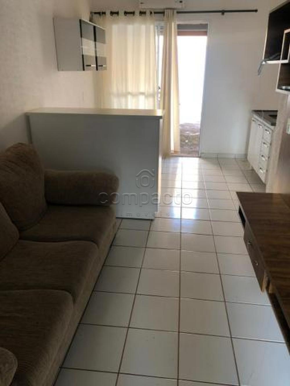 Alugar Casa / Condomínio em São José do Rio Preto apenas R$ 1.200,00 - Foto 3