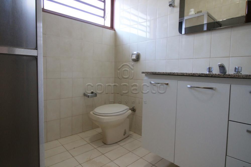 Alugar Comercial / Casa em São José do Rio Preto apenas R$ 2.300,00 - Foto 19