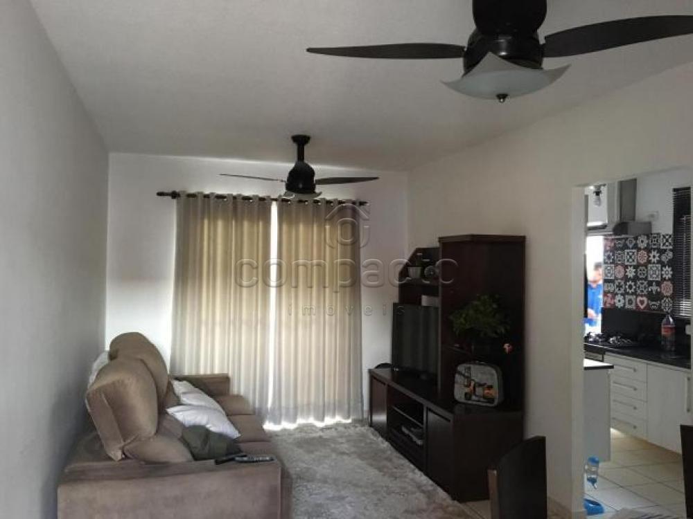 Comprar Casa / Condomínio em São José do Rio Preto apenas R$ 285.000,00 - Foto 2