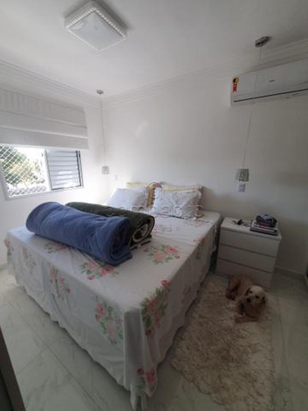 Comprar Casa / Condomínio em São José do Rio Preto apenas R$ 535.000,00 - Foto 10