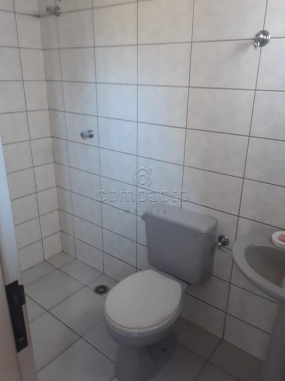 Alugar Apartamento / Padrão em São José do Rio Preto apenas R$ 1.250,00 - Foto 14
