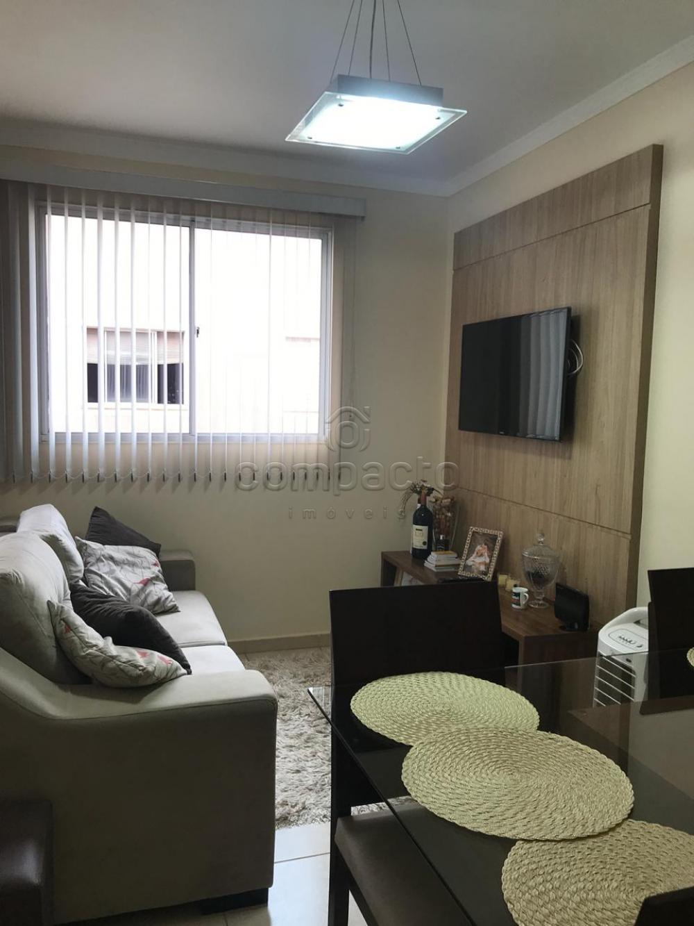 Alugar Apartamento / Padrão em São José do Rio Preto apenas R$ 800,00 - Foto 10