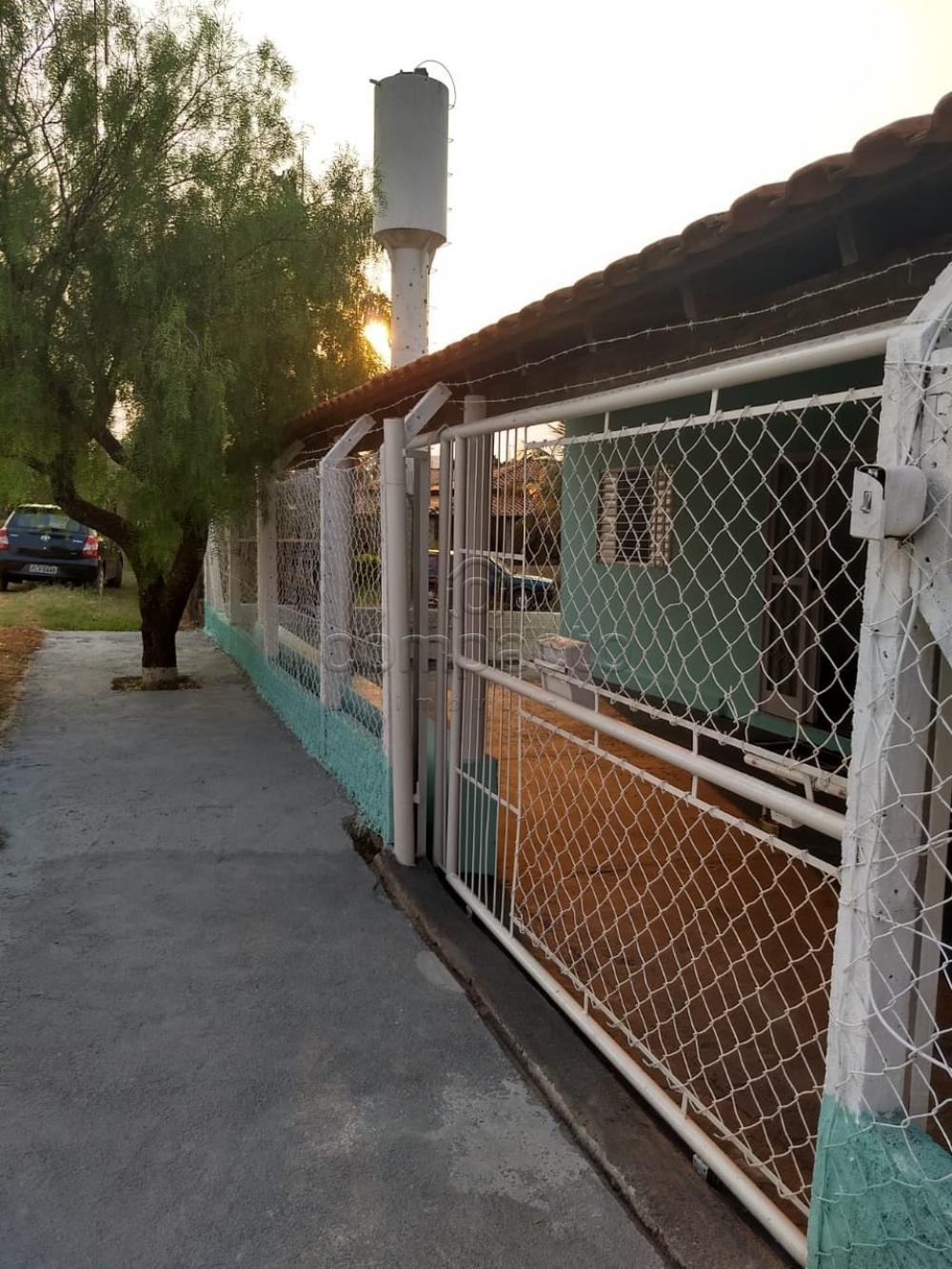 Comprar Rural / Chácara em São José do Rio Preto apenas R$ 254.400,00 - Foto 2
