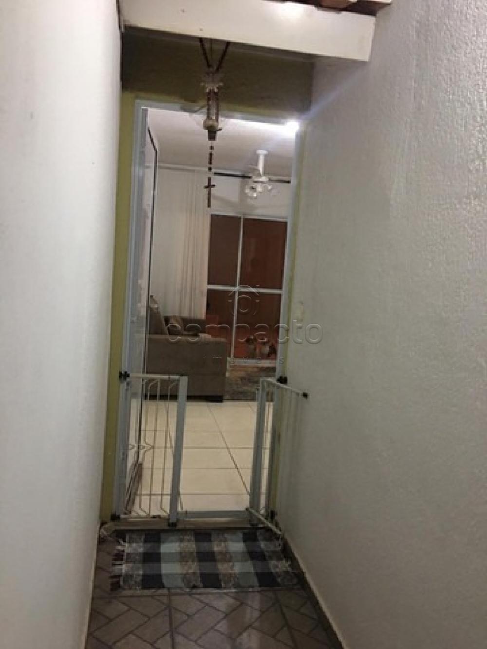 Comprar Casa / Condomínio em São José do Rio Preto apenas R$ 315.000,00 - Foto 3