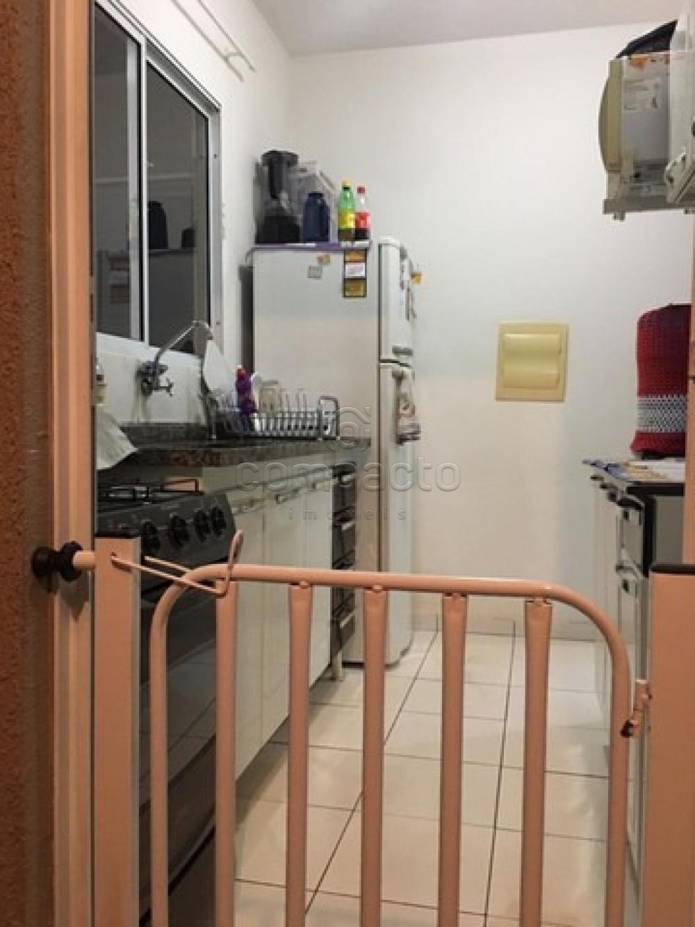 Comprar Casa / Condomínio em São José do Rio Preto apenas R$ 315.000,00 - Foto 9