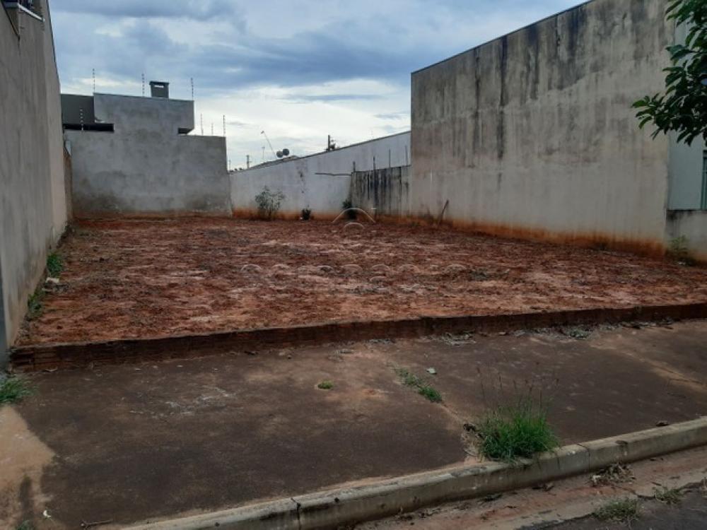 Comprar Terreno / Padrão em São José do Rio Preto apenas R$ 155.000,00 - Foto 1