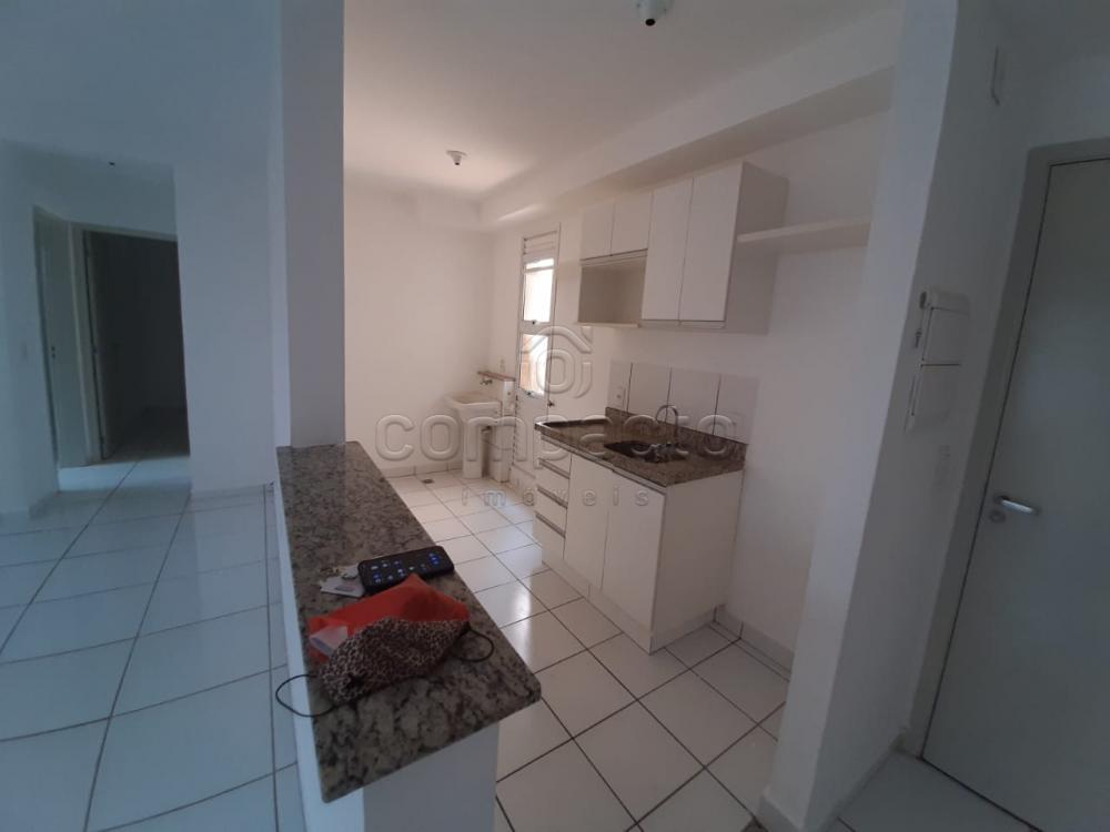 Alugar Apartamento / Padrão em São José do Rio Preto apenas R$ 1.150,00 - Foto 5