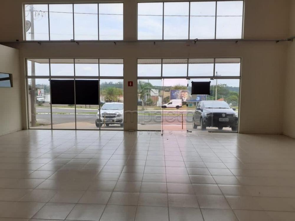 Alugar Comercial / Salão em Bady Bassitt apenas R$ 5.000,00 - Foto 2