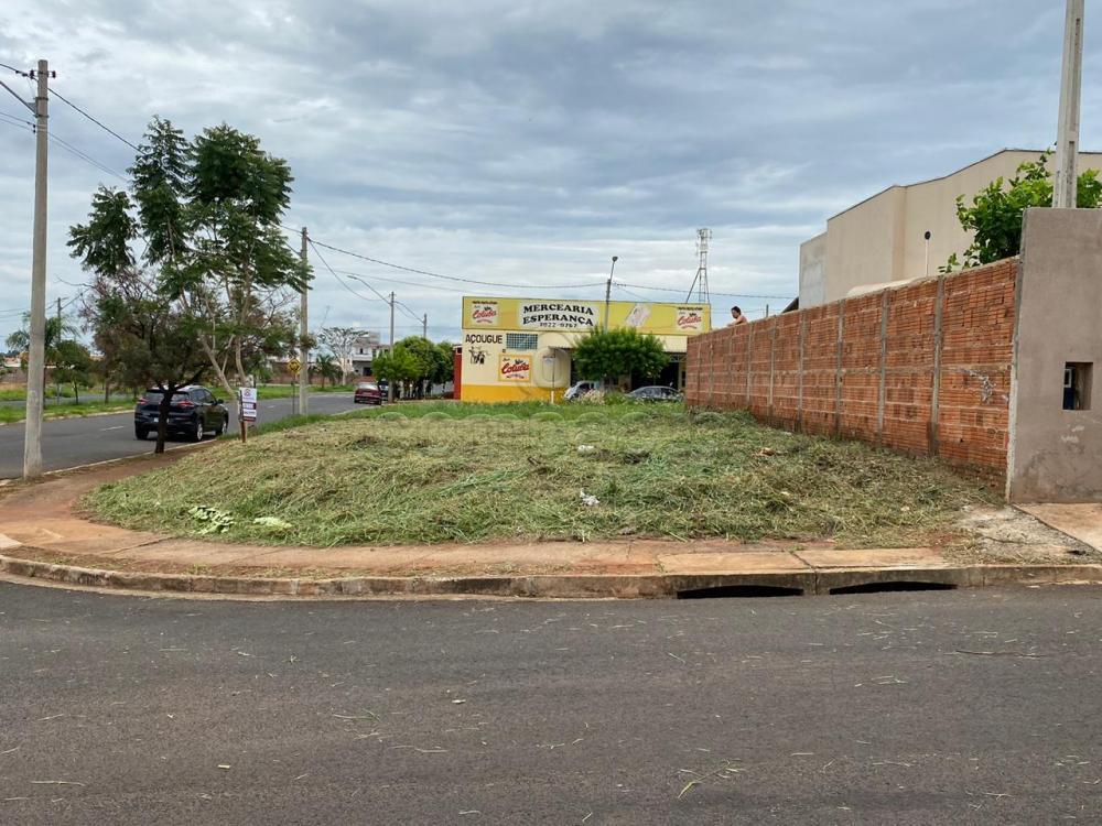 Comprar Terreno / Padrão em São José do Rio Preto apenas R$ 124.990,00 - Foto 1