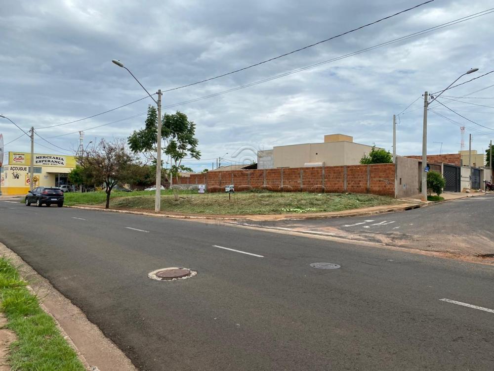 Comprar Terreno / Padrão em São José do Rio Preto apenas R$ 124.990,00 - Foto 4