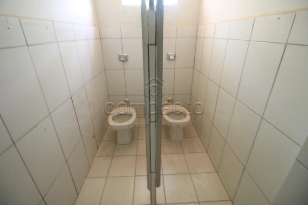 Alugar Comercial / Loja/Sala em São José do Rio Preto apenas R$ 7.000,00 - Foto 16