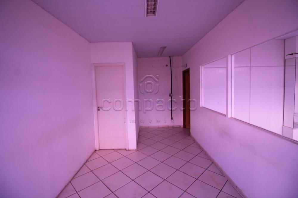 Alugar Comercial / Prédio em São José do Rio Preto apenas R$ 9.000,00 - Foto 11