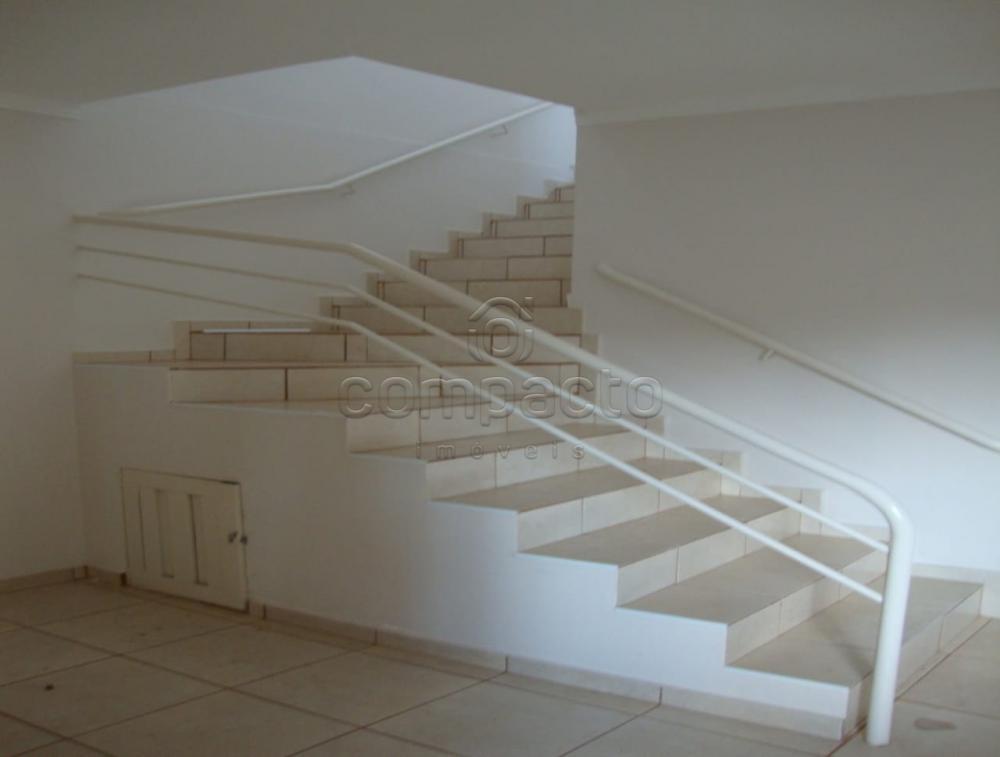 Alugar Comercial / Salão em São José do Rio Preto apenas R$ 15.000,00 - Foto 8