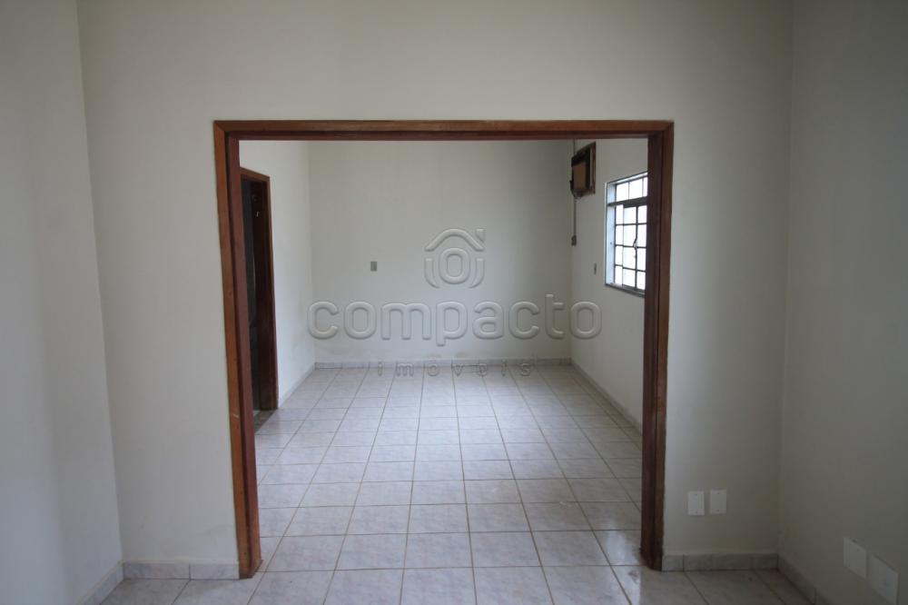 Alugar Casa / Padrão em São José do Rio Preto apenas R$ 1.200,00 - Foto 5